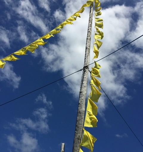 『幸せの黄色いハンカチ』ならぬ『幸せの黄色い旗運動』とは??